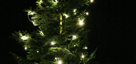 Weihnachtsbaum Manheim-Neu
